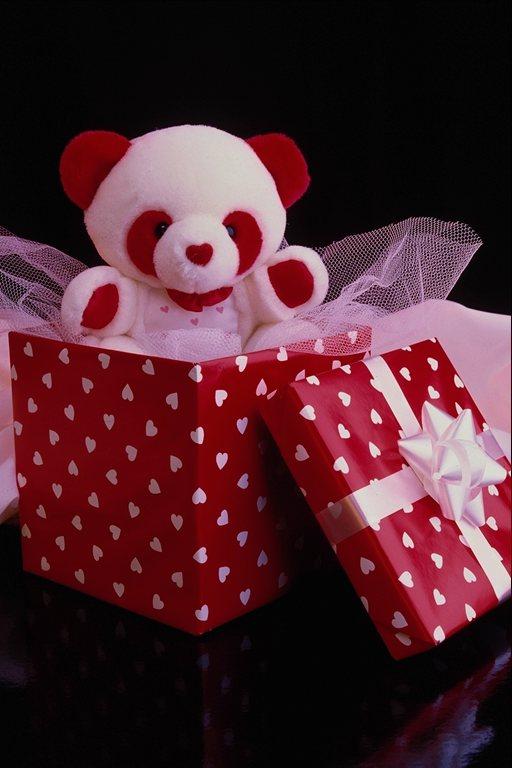 Подарки на день рождения 13 лет девочку 17